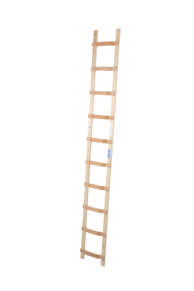 DachLeiter Holz 1x10 Spr.