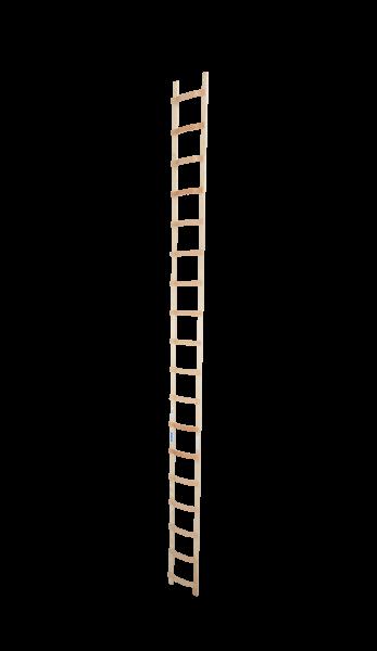 DachLeiter Holz 1x18 Spr.