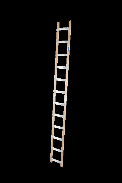 DachLeiter Alu-Holz 1x12 Spr.