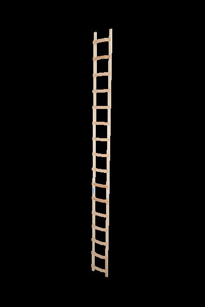 DachLeiter Holz 1x16 Spr.