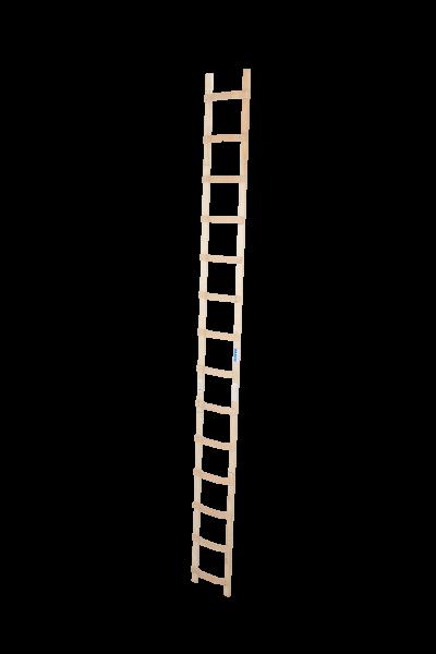 DachLeiter Holz 1x14 Spr.